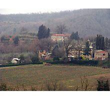 Montepulciano - Landscape with vineyard Photographic Print
