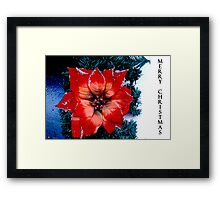 a flower for Christmas  Framed Print