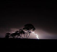 Mallee lightning 2 by Matthew Reid