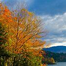 Autumn in Vermont by Murph2010