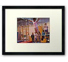 The Joy of Flight Framed Print