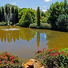 Ornamental Lake by Akrotiri