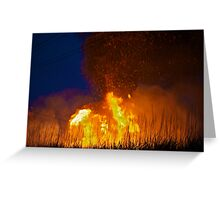 Burning cane, Ayr Greeting Card
