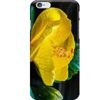 October Hibicus iPhone Case/Skin