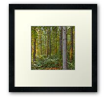 Poison Beauty 2 Framed Print