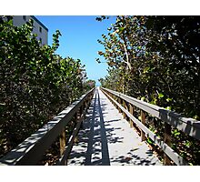 One of the way to the St.Pete beach Photographic Print