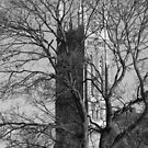 Church Tower- Black and White by Tracy Wazny