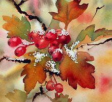 Snowy hawthorn by Ann Mortimer