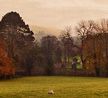 Mist Over Pendle by inkedsandra