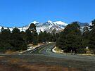 Humphrey's Peak by David  Hughes