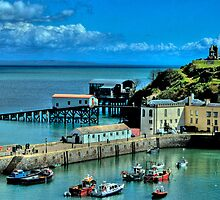 Tenby Harbour Pembrokeshire 2 by Steve Purnell
