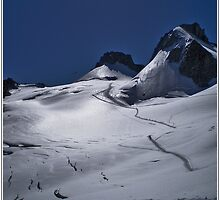 vallee blanche by kippis