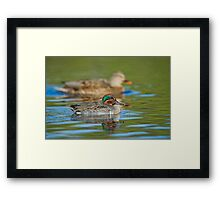 Size Difference Framed Print