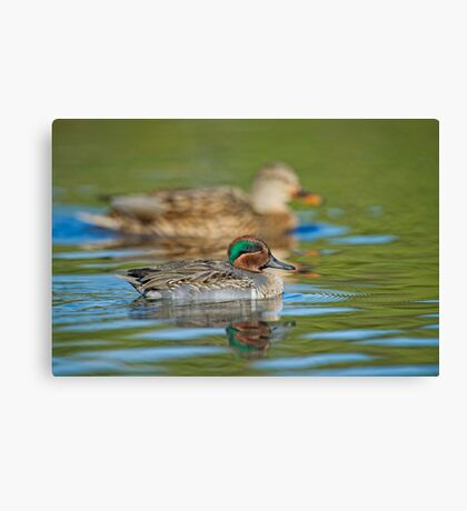 Size Difference Canvas Print