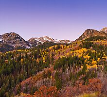 Mountain Colors by clintlosee