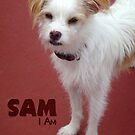SAM I am ~ New member of the Family by Myillusions