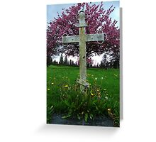 In The Shade Of Cherry Blossoms Greeting Card