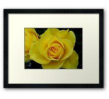 Yellow Mellow Framed Print