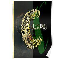 CALLIGRAPHIC 1 Poster
