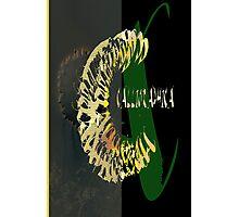 CALLIGRAPHIC 1 Photographic Print