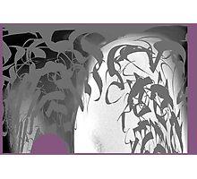 CALLIGRAPHIC 2 Photographic Print