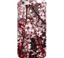 Spring has Sprung iPhone Case/Skin