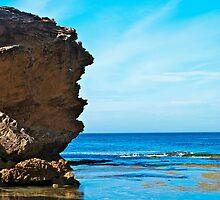 Australian Coastline by Gerard Rotse