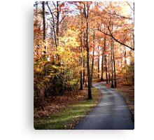 Dahlonega Fall Foliage Canvas Print