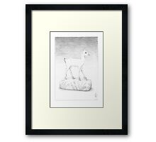 Ivory Gazelle Framed Print