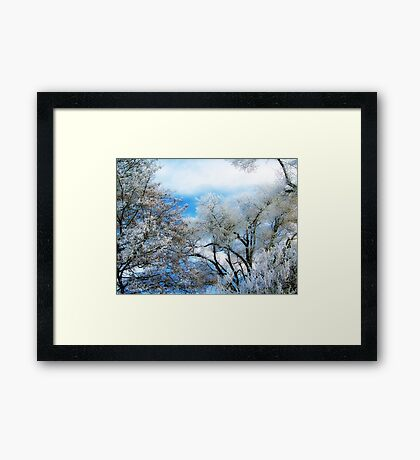 Frozen Trees 2 Framed Print