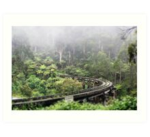 Waiting for Puffing Billy on a misty morning Art Print