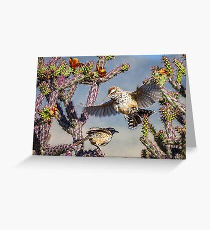 Desert Heat -- Cactus Wren Greeting Card