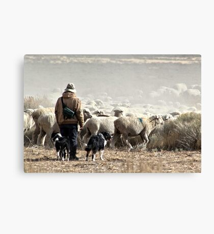 Annual Migration Canvas Print