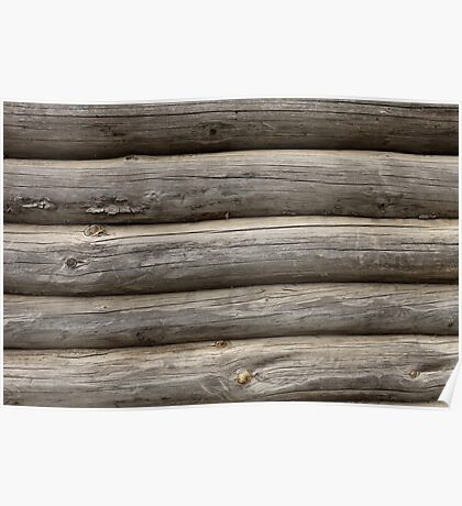 cracked wall of the logs Poster