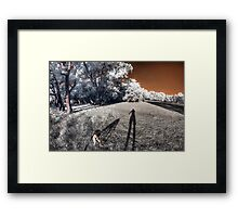 Dog taking me for an evening walk Framed Print