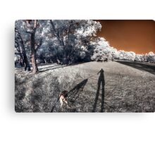 Dog taking me for an evening walk Canvas Print