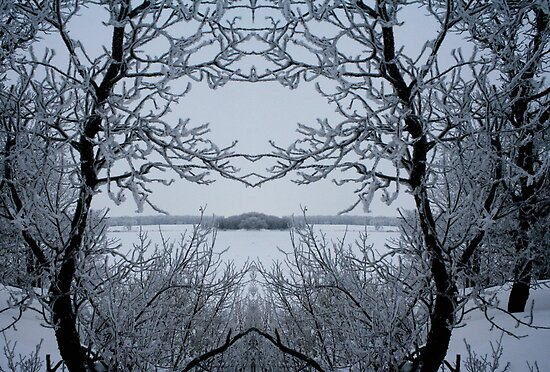 Winters Magic by Larry Trupp