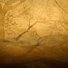 My Favorite Tree by Mark Wade