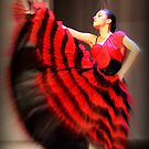 Flamengo dancer  by Peter Voerman