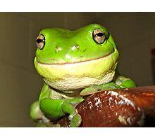 Hello, my sweetie! Photographic Print