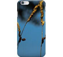 Waving Wheat iPhone Case/Skin