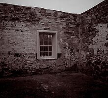 Outside, Inside by Penny Kittel
