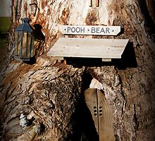 Pooh Bear's Australian holiday house by BronReid