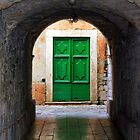 Green Door by Igor Shrayer