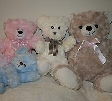 Adelyn's Teddies by aussiebushstick