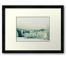 Nordic Nature Framed Print