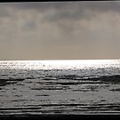 Sea Light XII by ArtOfE