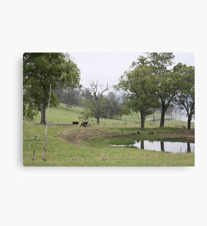 Foggy Morning in the Country Canvas Print
