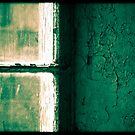 Window & Textured Green Wall by andymars