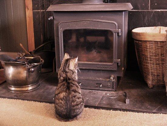 Meg Watches TV by artwhiz47